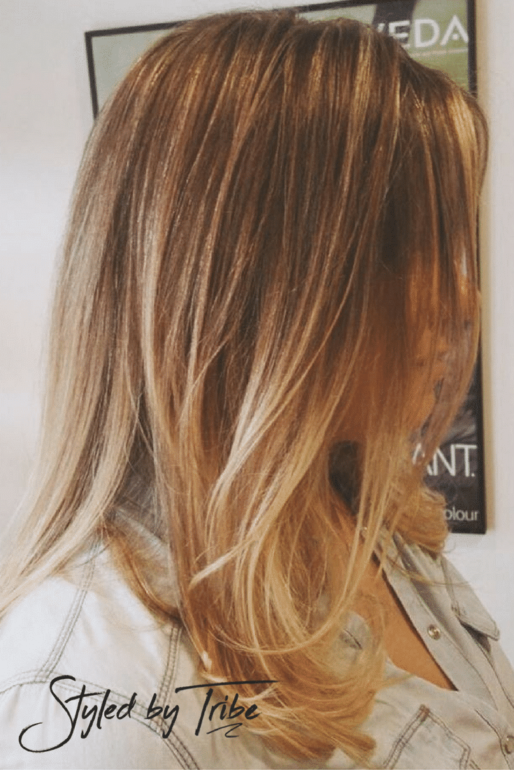 aveda salon haircut prices micro lights balayage aveda colour styled by 3995