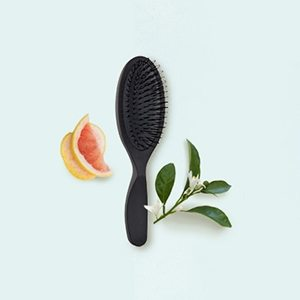 Pramasana Scalp Brush by Aveda - Tribe Salons